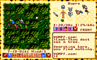 Ultima 6 - DOS - Forest.png