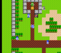 Dragon Warrior - NES - Town.png