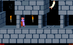 Prince of Persia - DOS - Tricks.png